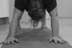 Programi joge 2016
