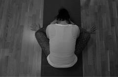 programi joge 2015