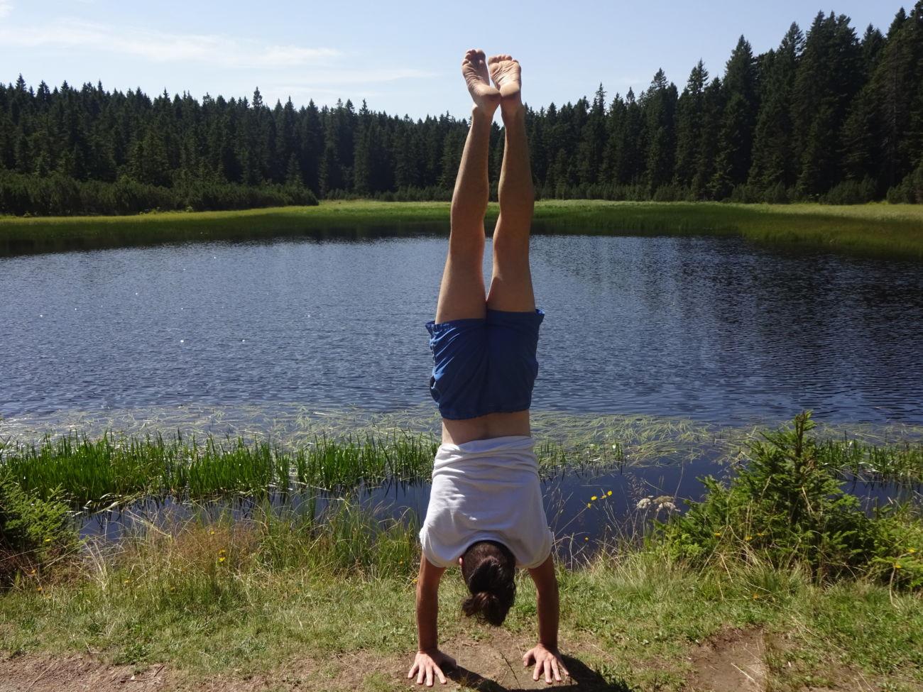 Nadaljevalni Učiteljski tečaj joge, +300. Napredna Flow praksa
