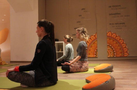 meditativna joga