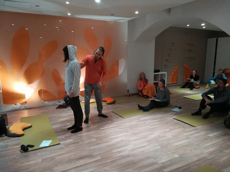 Zakonitosti mišičnih (kinetičnih) verig v praksi jogijskih asan (sobota, 16.11.)